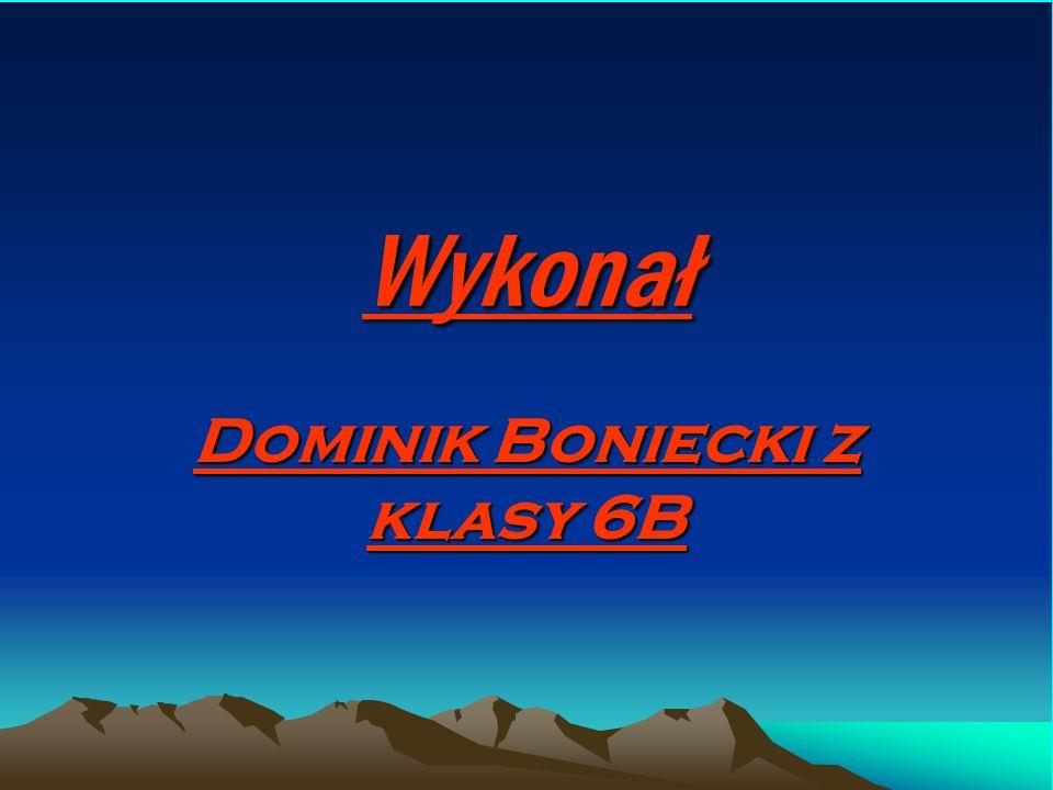 Dominik Boniecki z klasy 6B