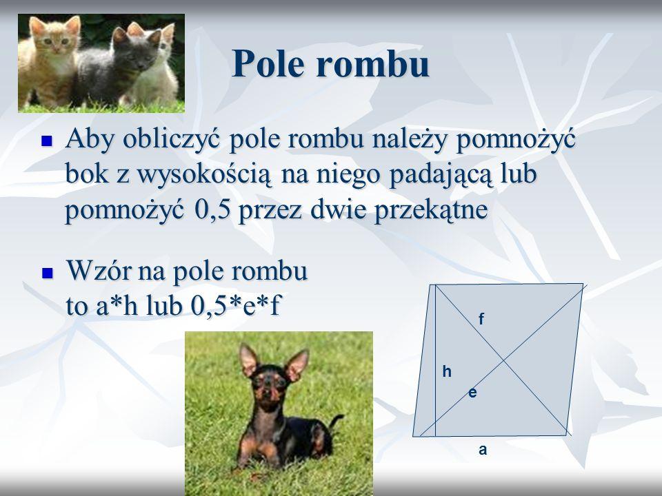 Pole rombu Aby obliczyć pole rombu należy pomnożyć bok z wysokością na niego padającą lub pomnożyć 0,5 przez dwie przekątne.