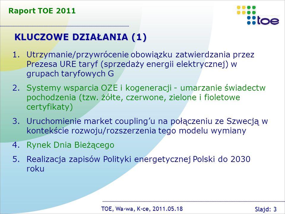 Raport TOE 2011 KLUCZOWE DZIAŁANIA (1)