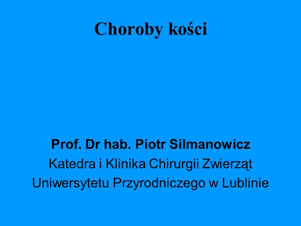 Prof. Dr hab. Piotr Silmanowicz
