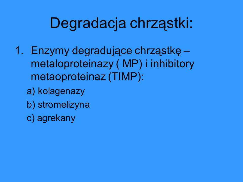 Degradacja chrząstki: