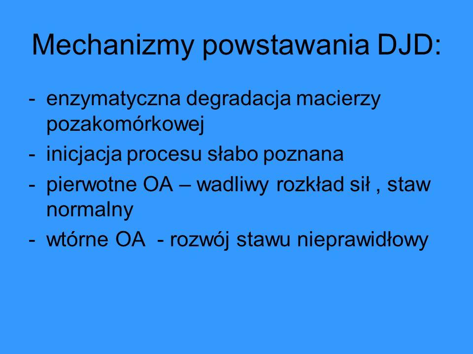 Mechanizmy powstawania DJD: