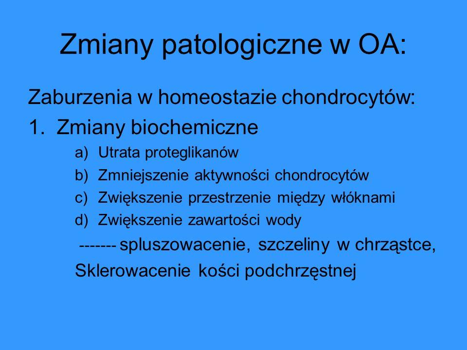 Zmiany patologiczne w OA: