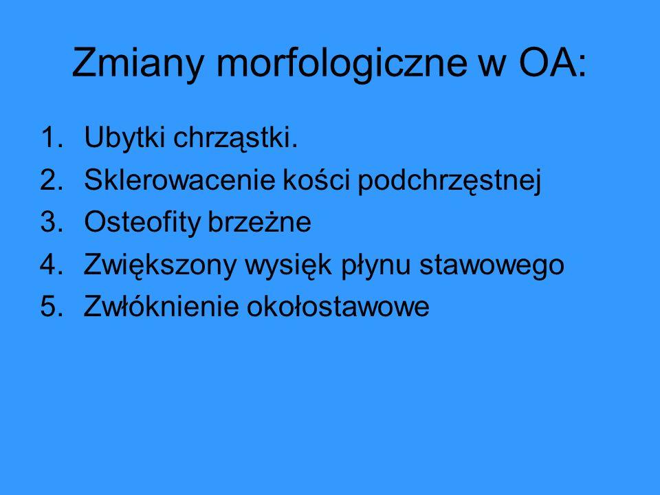 Zmiany morfologiczne w OA:
