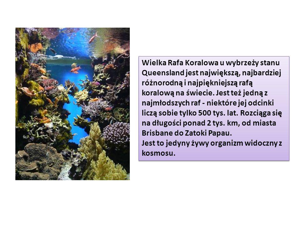 Wielka Rafa Koralowa u wybrzeży stanu Queensland jest największą, najbardziej różnorodną i najpiękniejszą rafą koralową na świecie. Jest też jedną z najmłodszych raf - niektóre jej odcinki liczą sobie tylko 500 tys. lat. Rozciąga się na długości ponad 2 tys. km, od miasta Brisbane do Zatoki Papau.