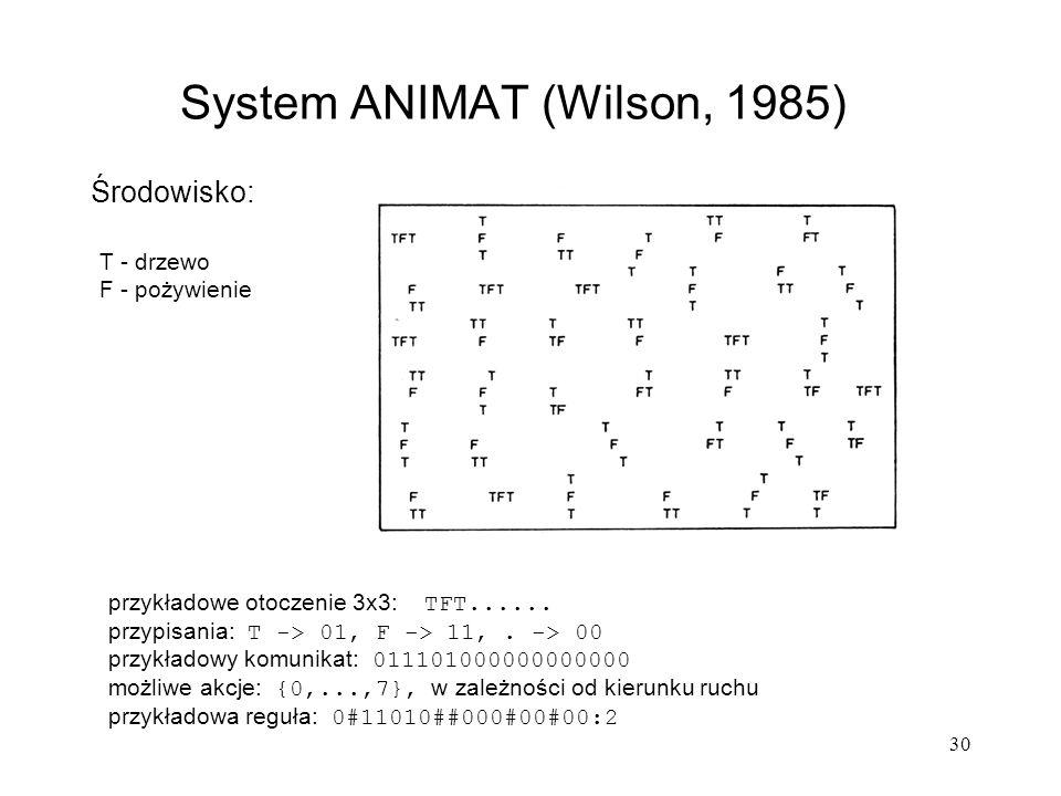 System ANIMAT (Wilson, 1985)