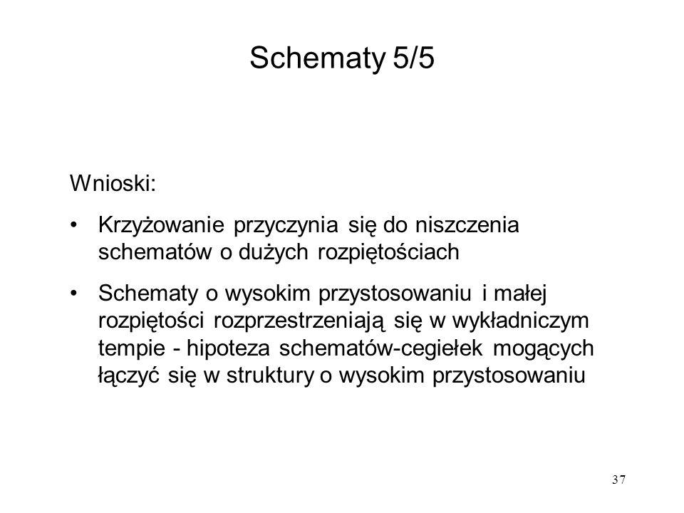Schematy 5/5 Wnioski: Krzyżowanie przyczynia się do niszczenia schematów o dużych rozpiętościach.