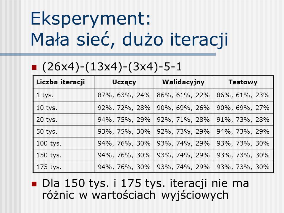 Eksperyment: Mała sieć, dużo iteracji