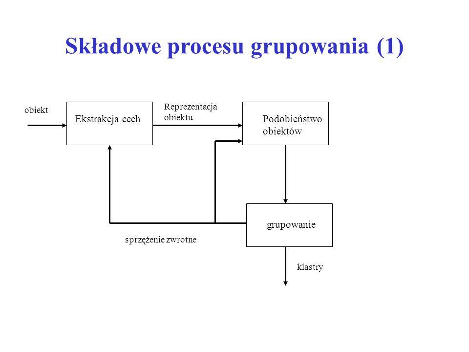 Składowe procesu grupowania (1)