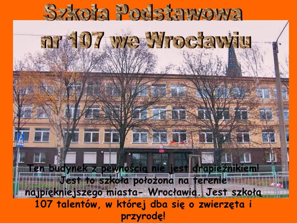 Szkoła Podstawowa nr 107 we Wrocławiu