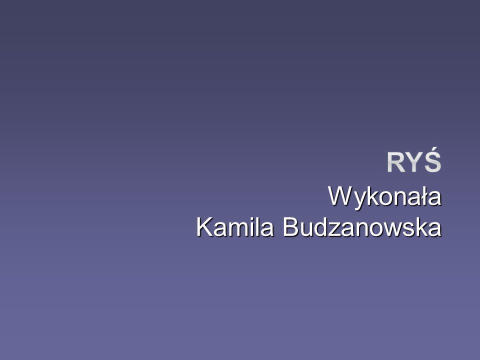 Wykonała Kamila Budzanowska