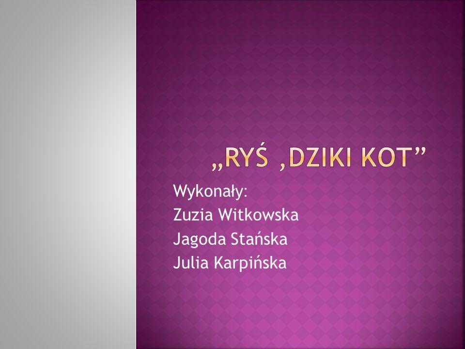 Wykonały: Zuzia Witkowska Jagoda Stańska Julia Karpińska