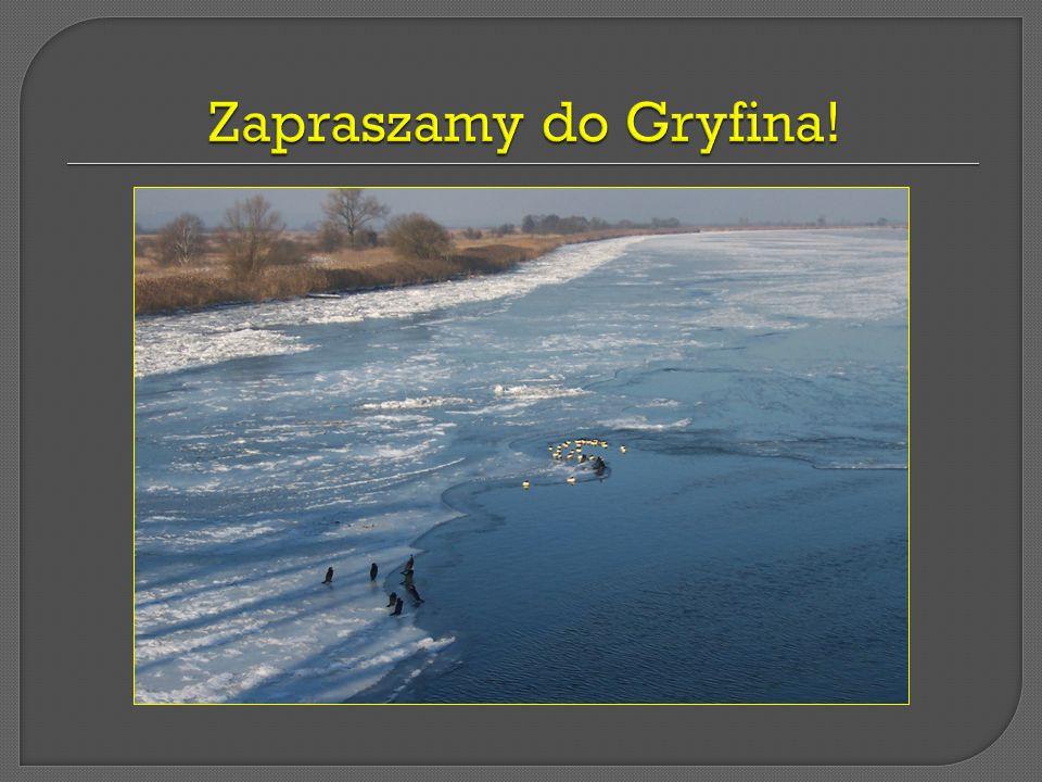 Zapraszamy do Gryfina!
