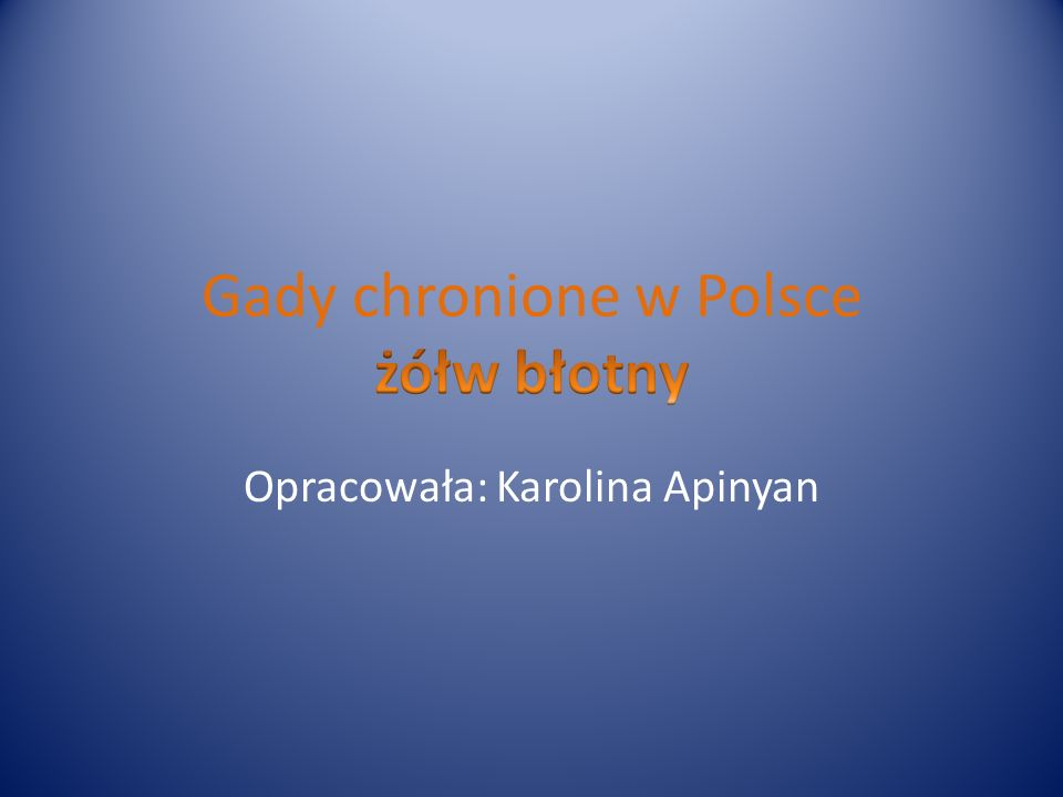 Gady chronione w Polsce żółw błotny