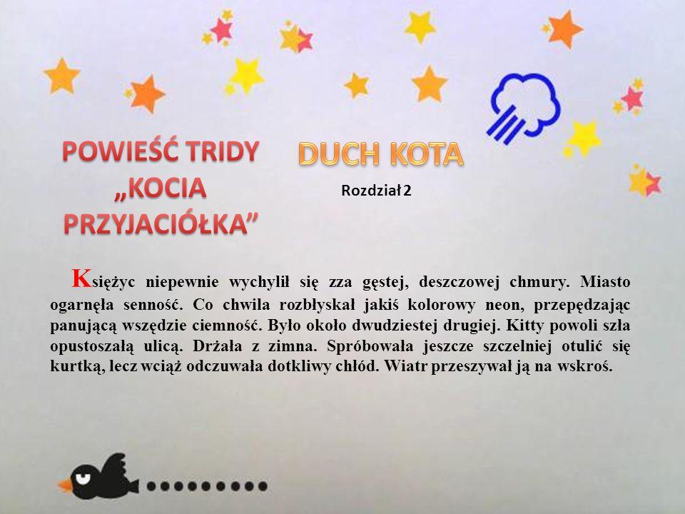 """DUCH KOTA POWIEŚĆ TRIDY """"KOCIA PRZYJACIÓŁKA Rozdział 2"""