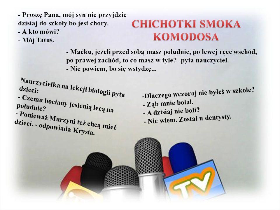 CHICHOTKI SMOKA KOMODOSA