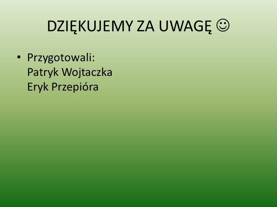 DZIĘKUJEMY ZA UWAGĘ  Przygotowali: Patryk Wojtaczka Eryk Przepióra