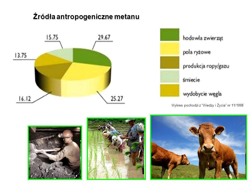 Źródła antropogeniczne metanu