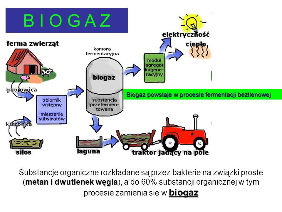 Substancje organiczne rozkładane są przez bakterie na związki proste