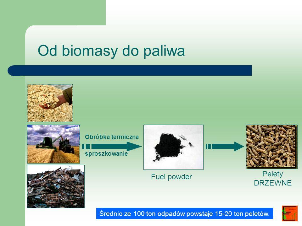 Od biomasy do paliwa Pelety Fuel powder DRZEWNE