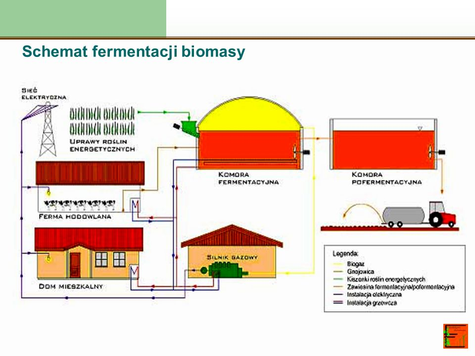 Schemat fermentacji biomasy