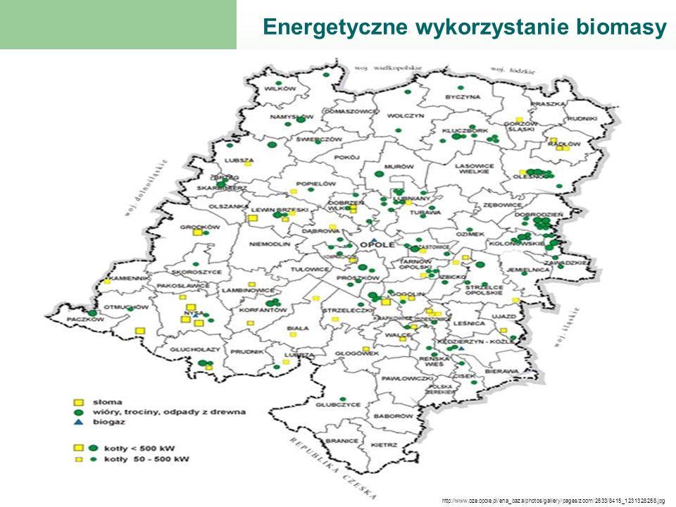 Energetyczne wykorzystanie biomasy