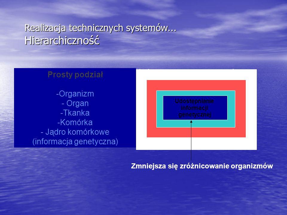 (informacja genetyczna)