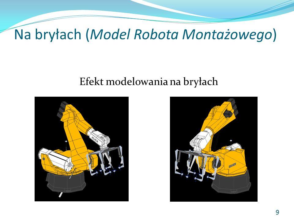 Na bryłach (Model Robota Montażowego)