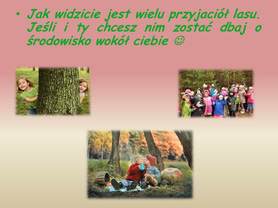 Jak widzicie jest wielu przyjaciół lasu