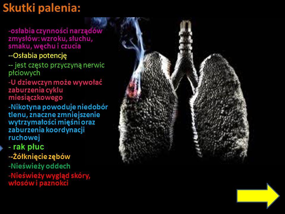 Skutki palenia: osłabia czynności narządów zmysłów: wzroku, słuchu, smaku, węchu i czucia. -Osłabia potencję.