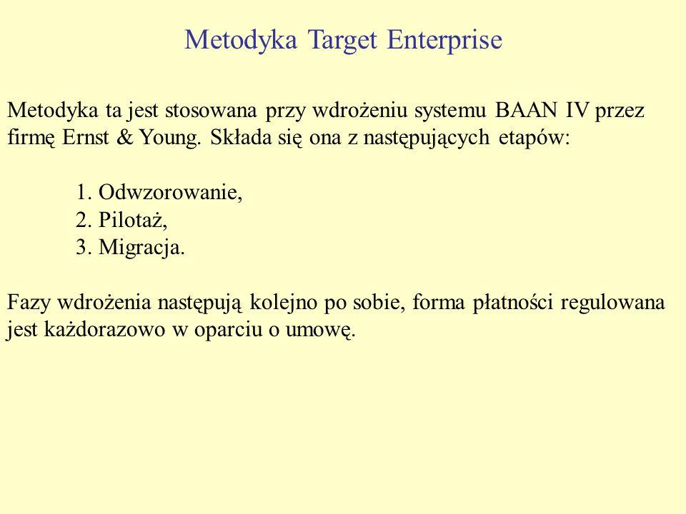 Metodyka Target Enterprise