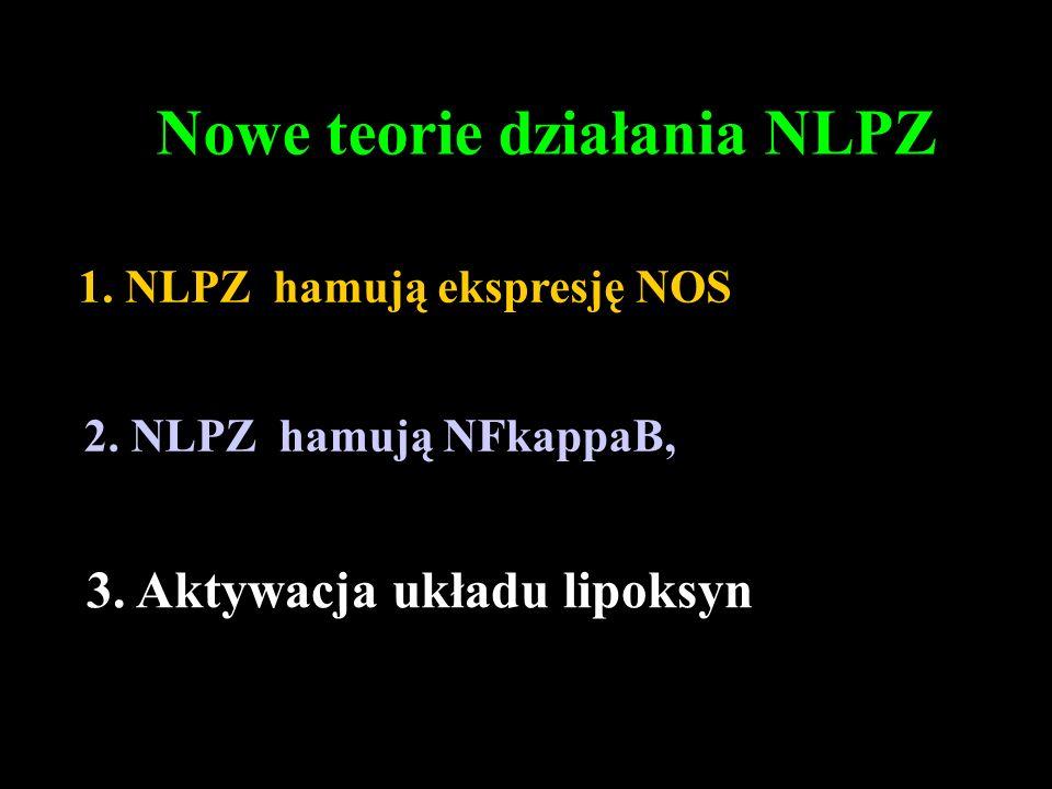 Nowe teorie działania NLPZ