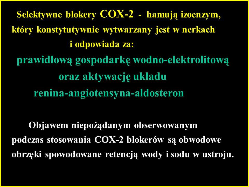 renina-angiotensyna-aldosteron
