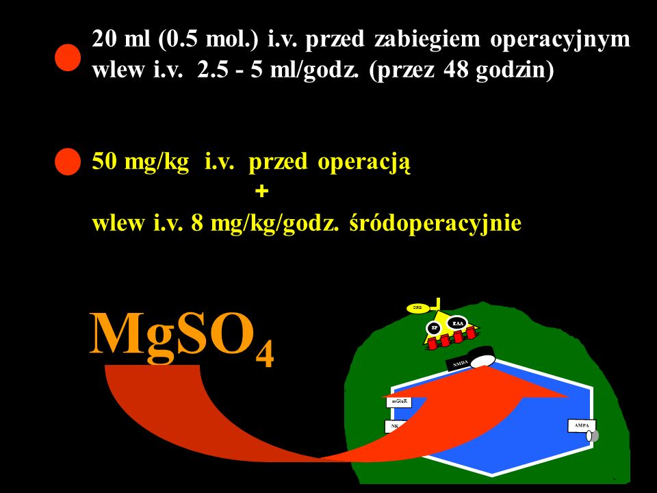 MgSO4 20 ml (0.5 mol.) i.v. przed zabiegiem operacyjnym