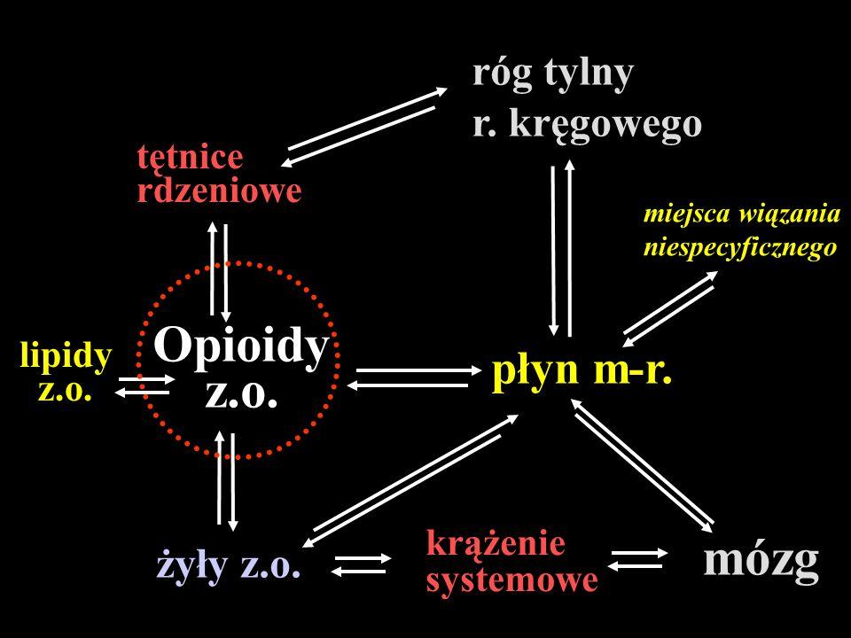 Opioidy mózg płyn m-r. róg tylny r. kręgowego żyły z.o. tętnice