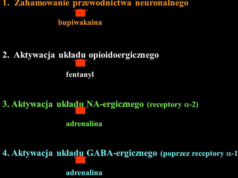 Zahamowanie przewodnictwa neuronalnego