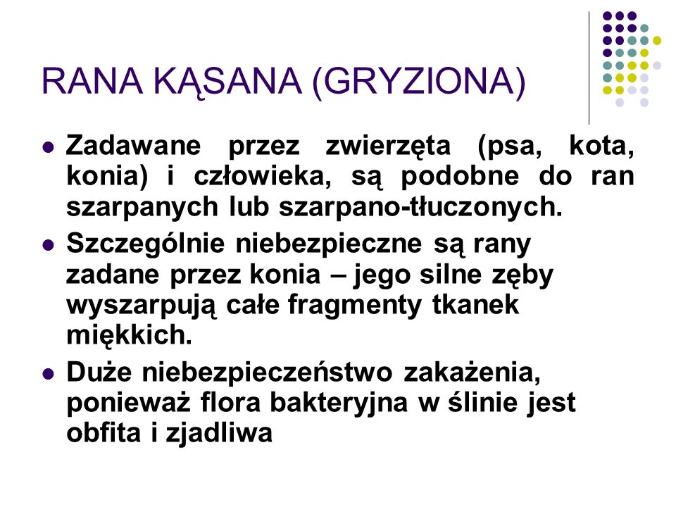 RANA KĄSANA (GRYZIONA)