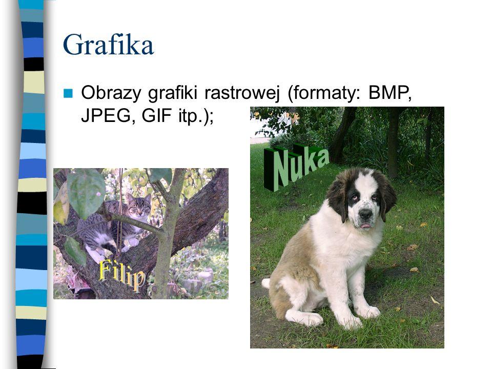 Grafika Nuka Obrazy grafiki rastrowej (formaty: BMP, JPEG, GIF itp.);