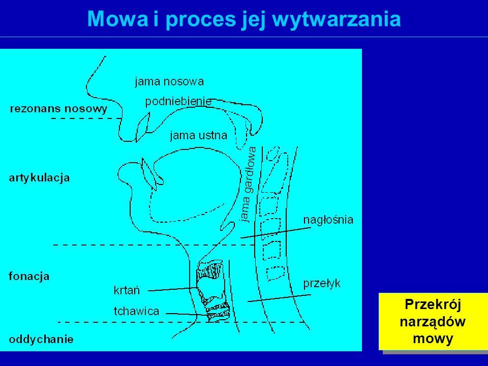 Mowa i proces jej wytwarzania Przekrój narządów mowy