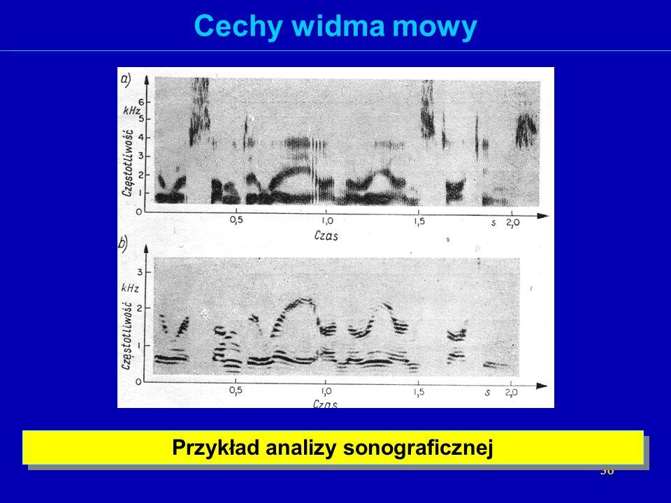 Przykład analizy sonograficznej