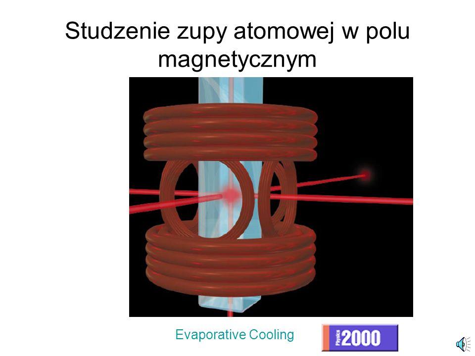 Studzenie zupy atomowej w polu magnetycznym
