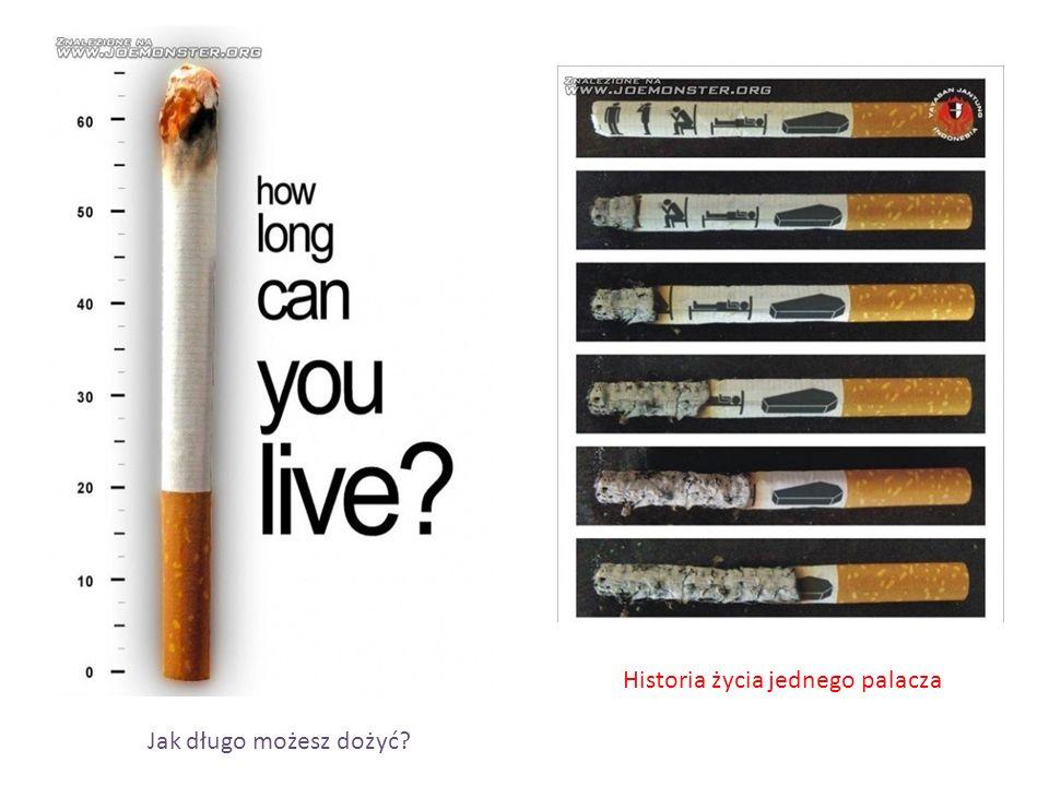 Historia życia jednego palacza