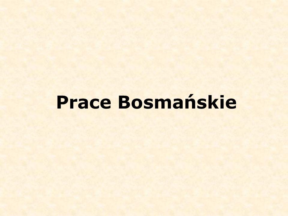 Prace Bosmańskie