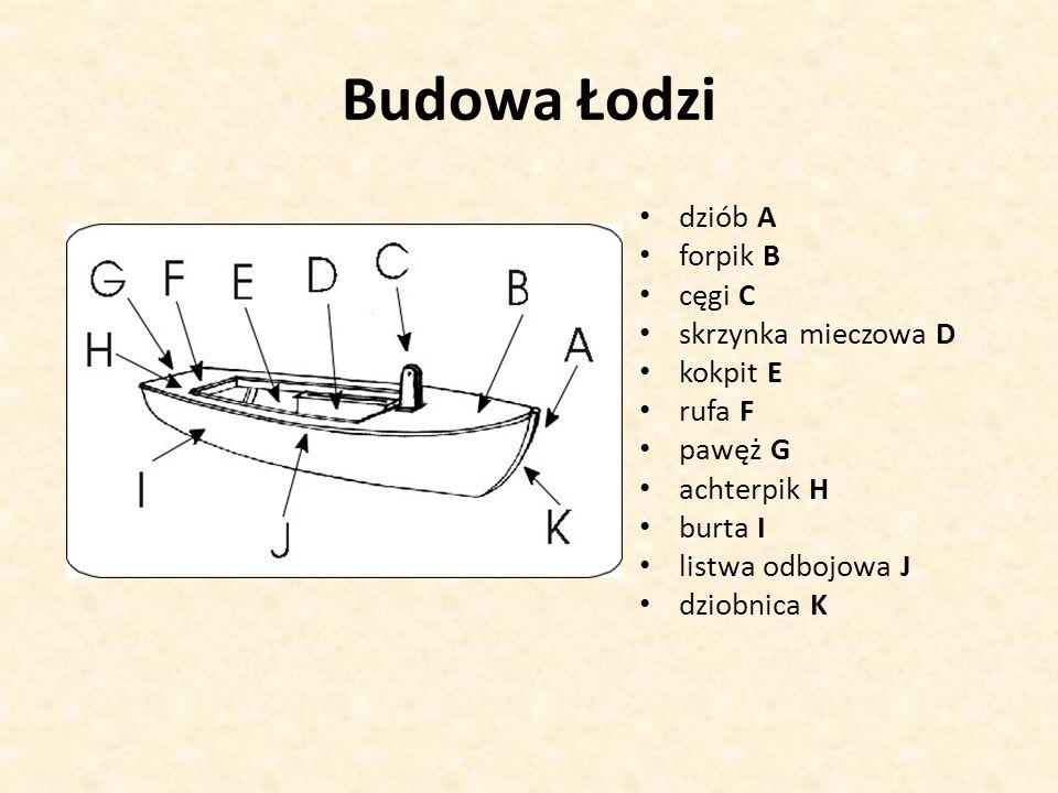 Budowa Łodzi dziób A forpik B cęgi C skrzynka mieczowa D kokpit E