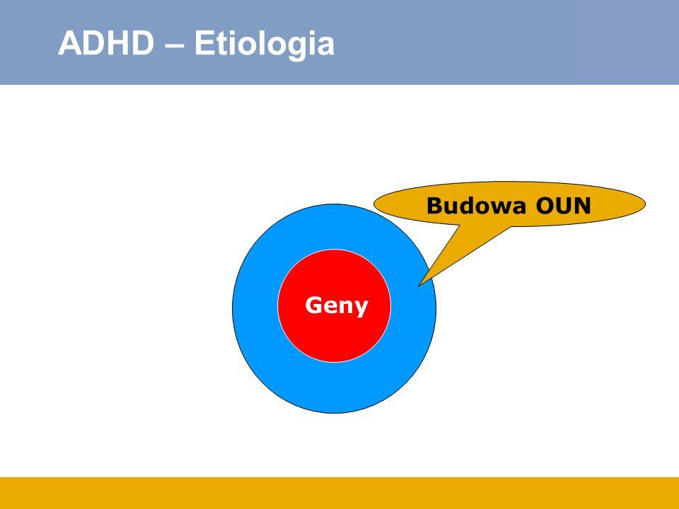 ADHD – Etiologia Budowa OUN Geny