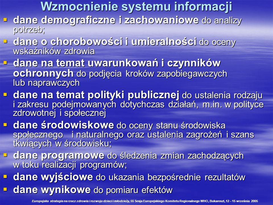 Wzmocnienie systemu informacji