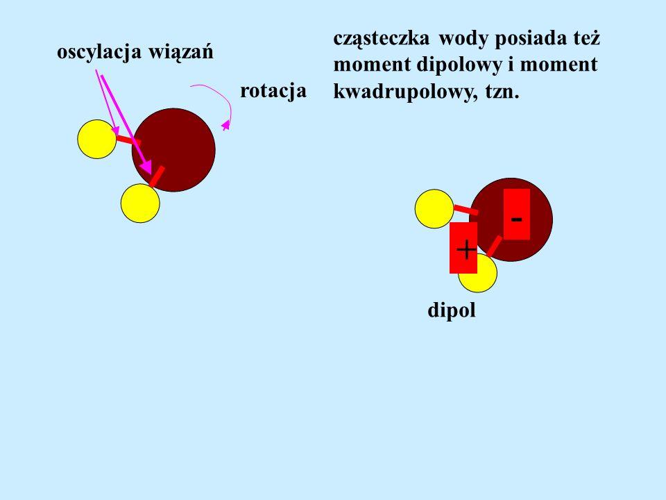 - + cząsteczka wody posiada też oscylacja wiązań