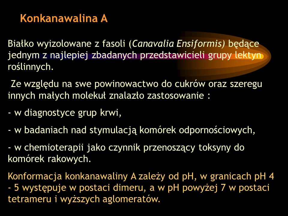 Konkanawalina A Białko wyizolowane z fasoli (Canavalia Ensiformis) będące jednym z najlepiej zbadanych przedstawicieli grupy lektyn roślinnych.