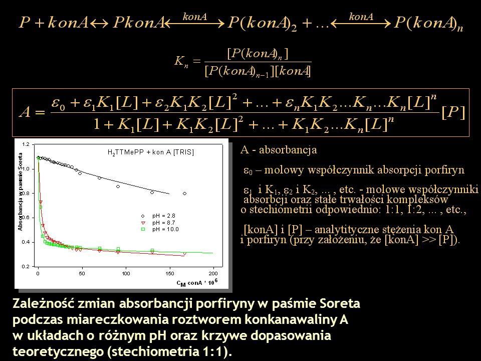 Zależność zmian absorbancji porfiryny w paśmie Soreta podczas miareczkowania roztworem konkanawaliny A w układach o różnym pH oraz krzywe dopasowania teoretycznego (stechiometria 1:1).