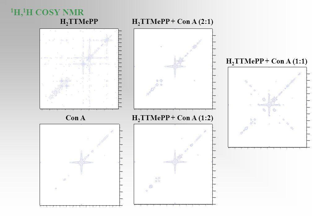 1H,1H COSY NMR H2TTMePP H2TTMePP + Con A (2:1) H2TTMePP + Con A (1:1)